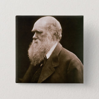 Charles Darwin (1809-82) (photo) Pinback Button