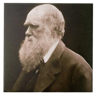 Charles Darwin (1809-82) (photo) Tile