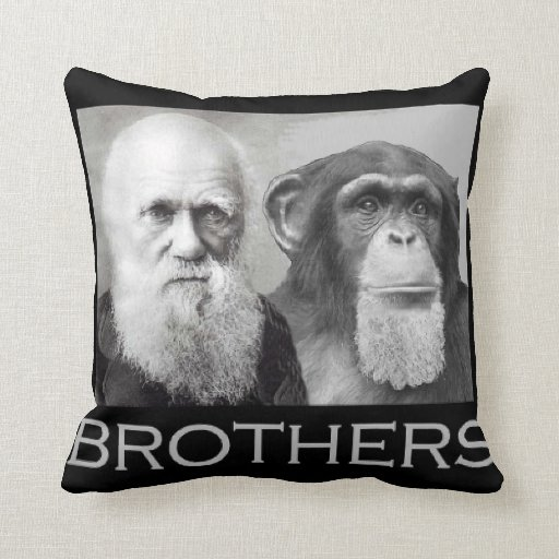 Charles Darwin and a Chimp are brothers Pillows