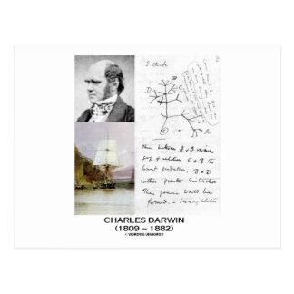 Charles Darwin (beagle Phylogenetics de Darwin Postal