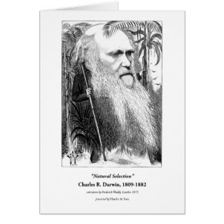 Charles Darwin Caricature 1873 Card