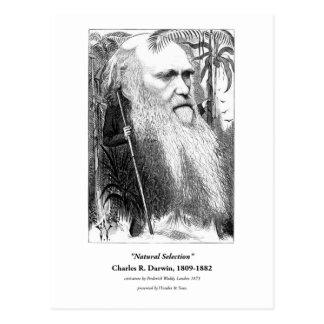 Charles Darwin Caricature 1873 Postcard