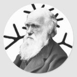 Charles Darwin Classic Round Sticker