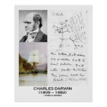 Charles Darwin Collage HMS Beagle Evolution Posters