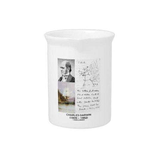 Charles Darwin (Darwin HMS Beagle Phylogenetics) Beverage Pitcher