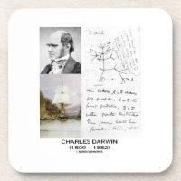 Charles Darwin (Darwin HMS Beagle Phylogenetics) Drink Coasters