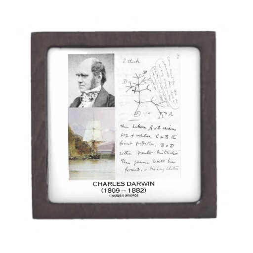 Charles Darwin (Darwin HMS Beagle Phylogenetics) Premium Keepsake Box