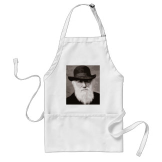 Charles Darwin in 1880, as an old gentleman Apron
