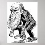 Charles Darwin Original Illustration Posters