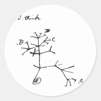 Charles Darwin - pienso (el negro) Pegatinas Redondas
