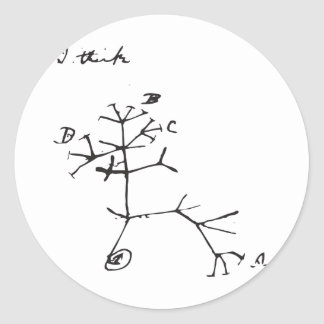 Charles Darwin - pienso (el negro) Pegatina Redonda