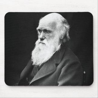 Charles Darwin Portrait Mouse Pad