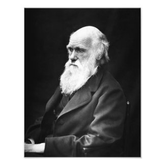 Charles Darwin Portrait Photo Print