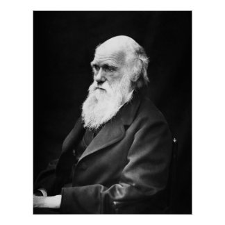 Charles Darwin Portrait Poster