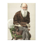 Charles Darwin Stretched Canvas Prints