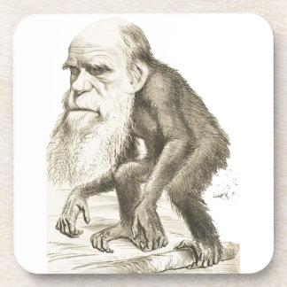 Charles Darwin the Monkey Man Coasters