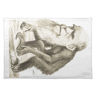 Charles Darwin the Monkey Man Placemats