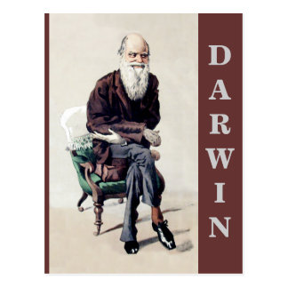 Charles Darwin Vanity Fair Illustration Postcard