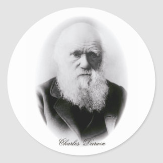 Charles Darwin Vignette Classic Round Sticker