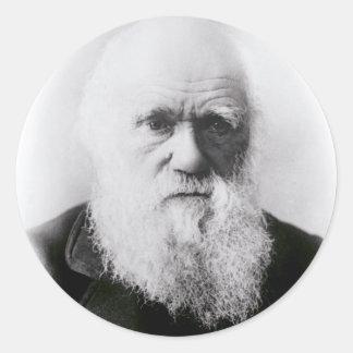 Charles Darwin Vignette Sticker