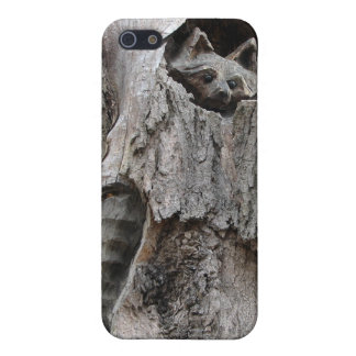 Charles E. Burchfield Nature and Art Center Cover For iPhone SE/5/5s