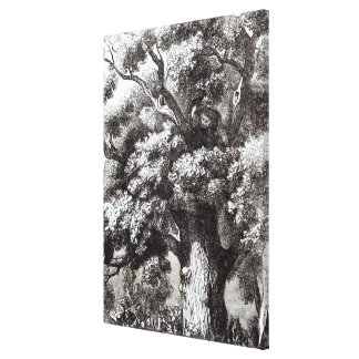 Charles II  Hidden in the Oak Tree Canvas Print