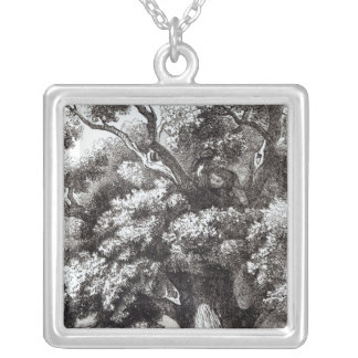 Charles II  Hidden in the Oak Tree Silver Plated Necklace