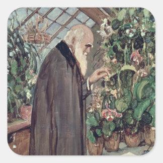 Charles Robert Darwin Square Sticker