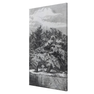 Charles Waterton's Grave Canvas Print