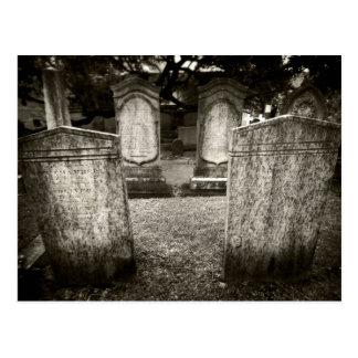 Charleston Cemetery Postcard