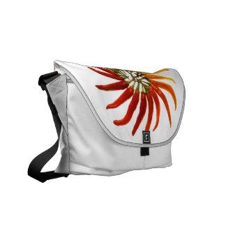 Charleston Hot Pepper Color Wheel Courier Bag