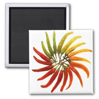 Charleston Hot Peppers Color Wheel Magnet