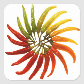 Charleston Hot Peppers Color Wheel Square Sticker