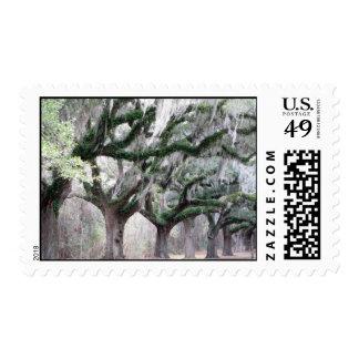 Charleston Oaks Postage Stamp
