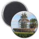 Charleston SC Pineapple Fountain Magnet