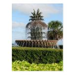 Charleston SC Pineapple Fountain Postcard