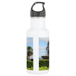 Charleston SC Pineapple Fountain Stainless Steel Water Bottle