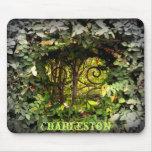 Charleston View Mouse Pad