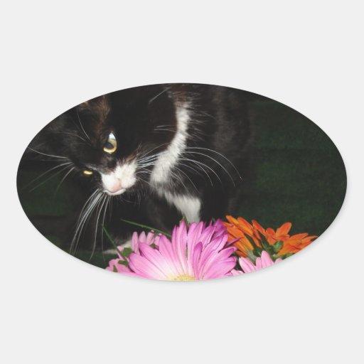 Charli Cat and Flowers Sticker