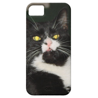 Charli Cat Attitude iPhone 5 Covers