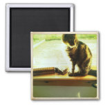 Charlie At The Window 2 Inch Square Magnet