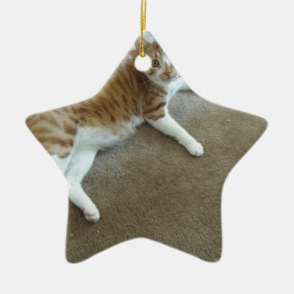 charlie ceramic ornament