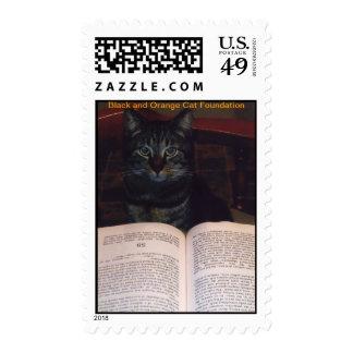 Charlie reading stamp