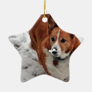 Charlie Snow Snout Ceramic Ornament