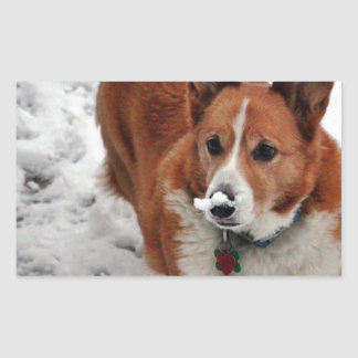 Charlie Snow Snout Rectangular Sticker