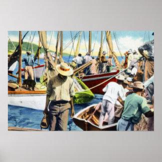 Charlotte Amalie Virgin Islands Docks Poster
