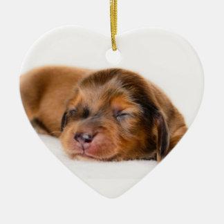 Charlotte Newborn-Lovebugdoxies puppy keepsake Christmas Tree Ornament