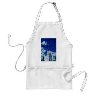 charlotte north carolina city downtown skyline upt adult apron
