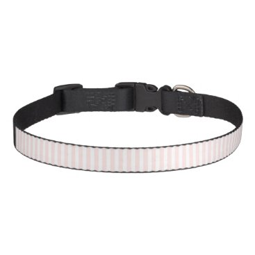 Professional Business Charlotte Pink and White Stripes Baby Pink Pet Collar