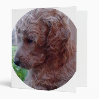 Charly,poodle baby 3 ring binder